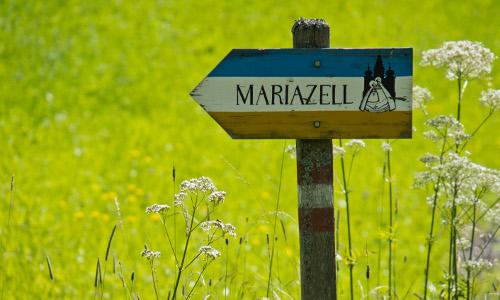 Mein Weg nach Mariazell, © www.mariazell.blog