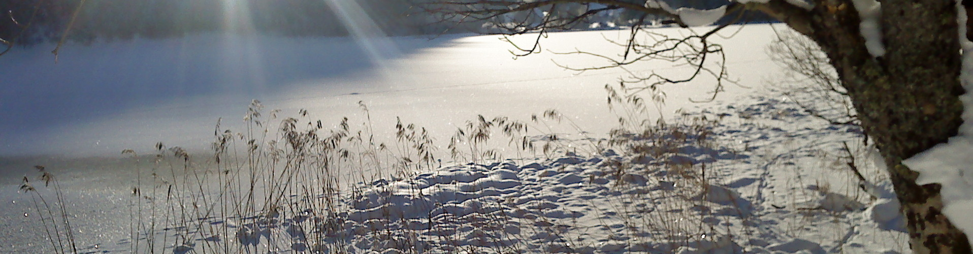 Erlaufsee Winter