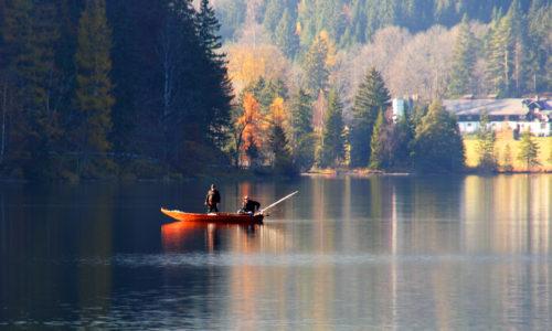 Fischen am Erlaufsee, © mariazell.blog
