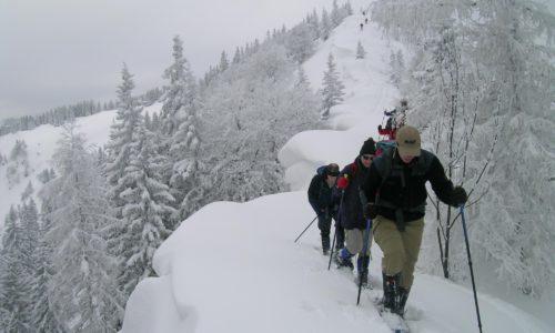 aufstieg-ueber-den-verwechteten-westruecken-zur-gemeindealpe ©Csaba Szépfalusi, alpenvereinaktiv.com