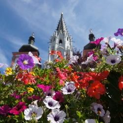 Basilika mit Blumen, © www.mariazell.blog