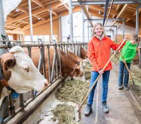 Bauernhof Des Jahres 19 © LK-Danner