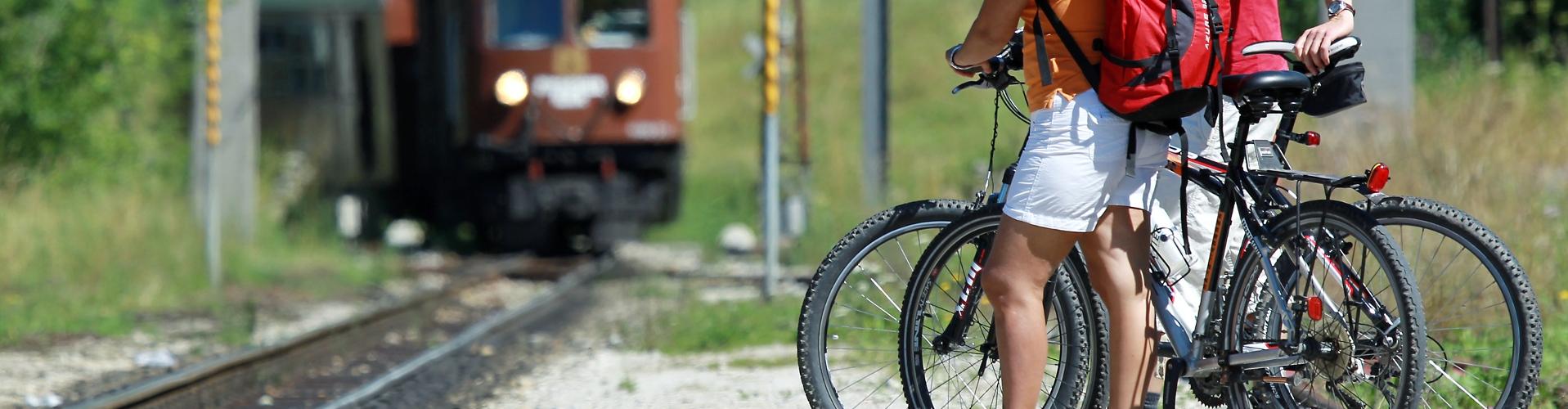 Ötscherbär mit Räder ©weinfranz