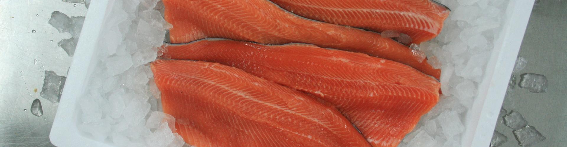 Lachs, © decleva's alpenfisch