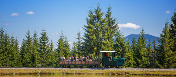 Waldeisenbahn im Holzknechtland, © TVB Mariazeller Land/www.mariazell.blog