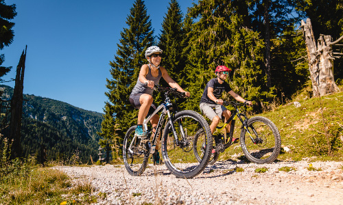 Mountainbike, © TVB Mariazeller Land / Rudy Dellinger