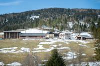 Bauernhof Feldbauerhof