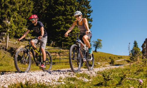 Mountainbiken im Mariazeller Land, © TVB Mariazeller Land / Rudy Dellinger