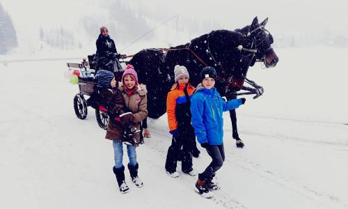 Pferdeschlittenfahrt, © Mag. Tamara Frießnegg